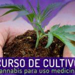 7º Curso de Cultivo Apepi